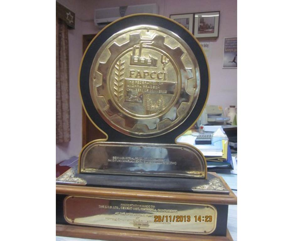 The Best Industrial Productivity Award for 2003-2004 from FAPCCI, Hyderabad.